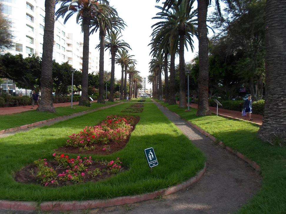 CASABLANCA, Il Giardino di Mohamed Abdou